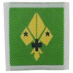 Beloftekenteken scouts